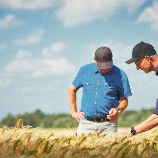 Farmbrella- Landbrugets digitale vidensnetværk.